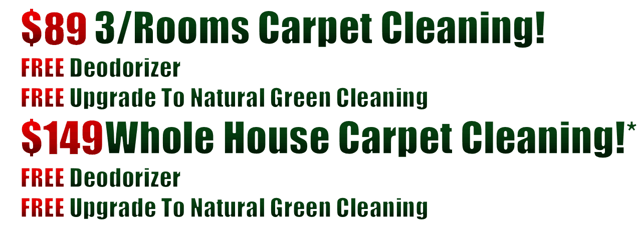 Carpet Cleaning Services Carpet Steam Cleaning Company