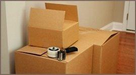 Fornitura scatole