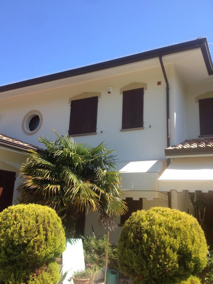 una villetta di color bianco con delle tende, cespugli e una palma
