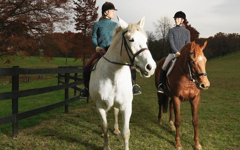 Equitazione ludica Country Club Roma Equitazione