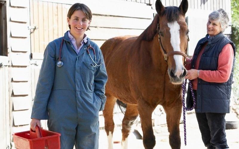Pensione per cavalli Country Club Roma Equitazione