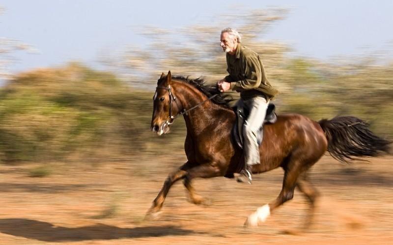 Servizi maneggio Country Club Roma Equitazione