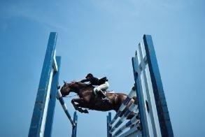 salto ostacoli cavalli Roma