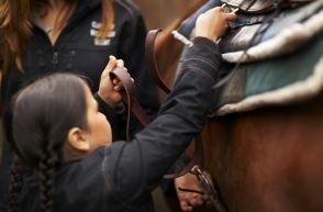 equitazione Country Club Roma Equitazione
