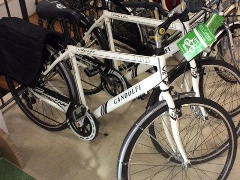 Cicli Gandolfi offerta bici