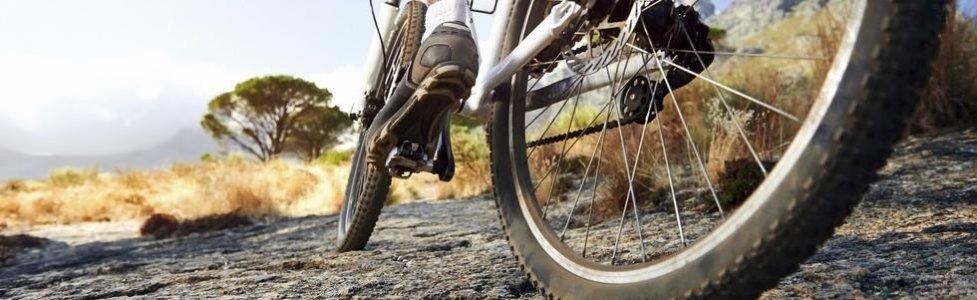 Manutenzione mountain bike Brescia