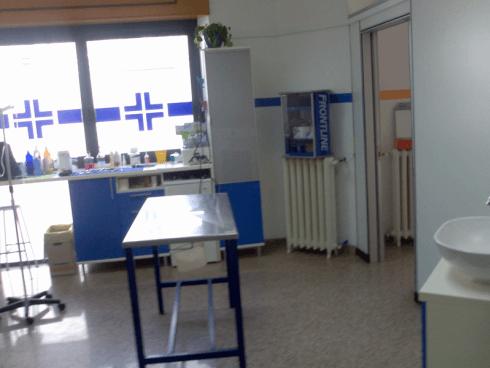 cliniche veterinarie