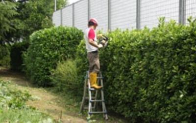 potatura-giardini