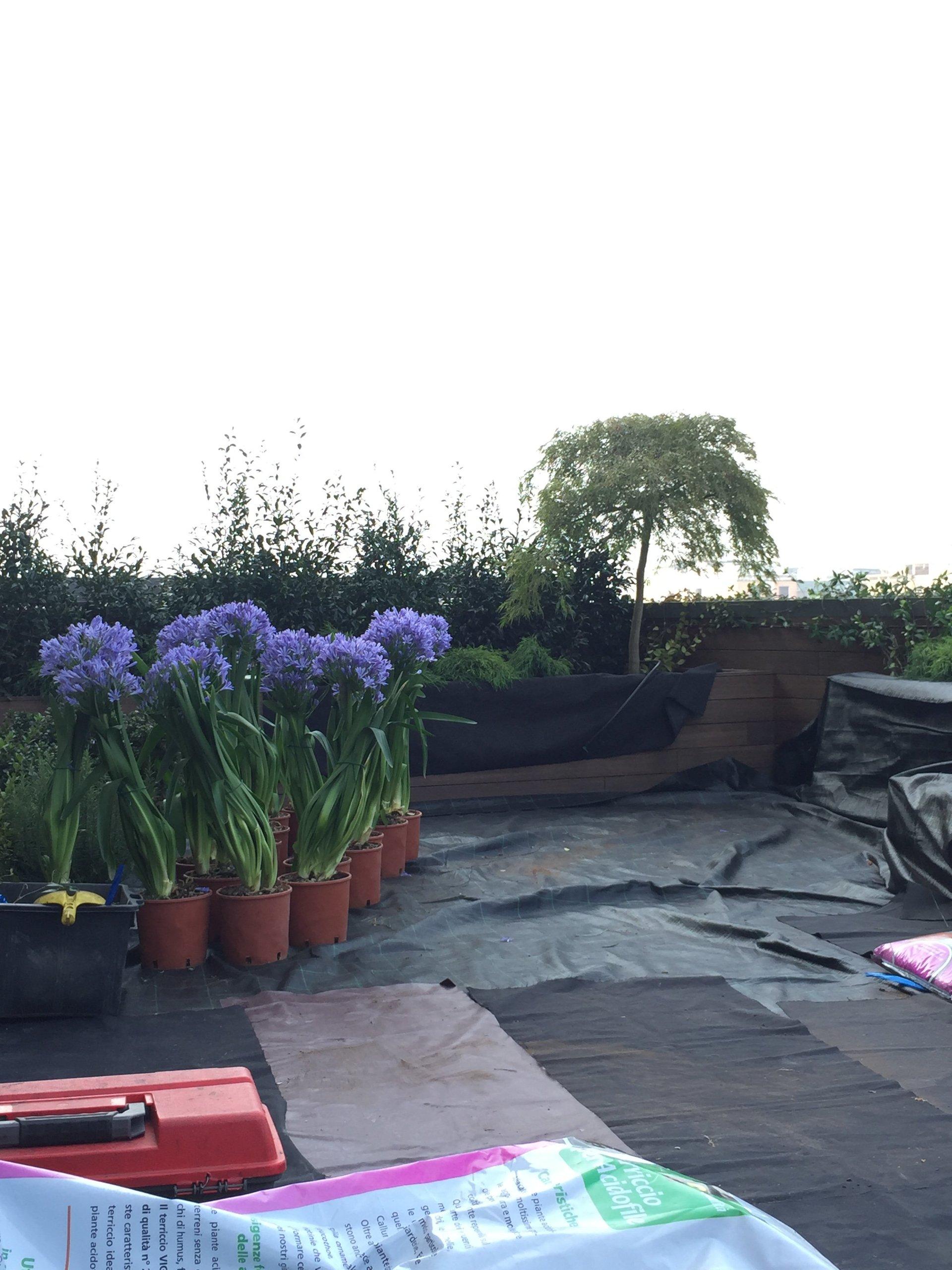 Progettazione giardini milano la terrazza for Allestimento giardini privati