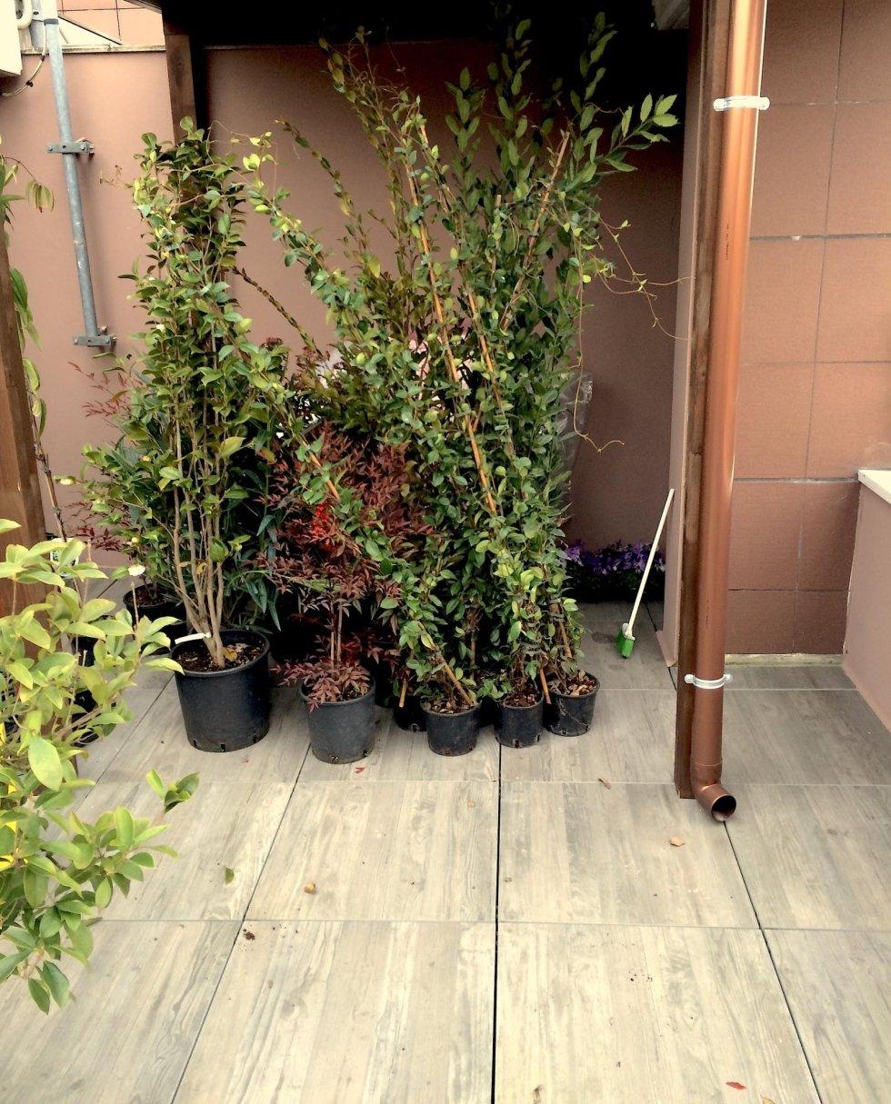 giardinetto su progetto