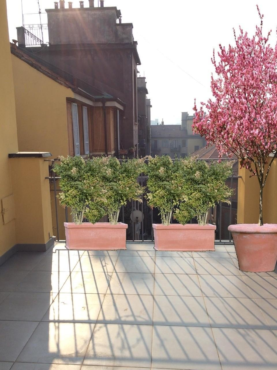 Progettazione giardinaggio