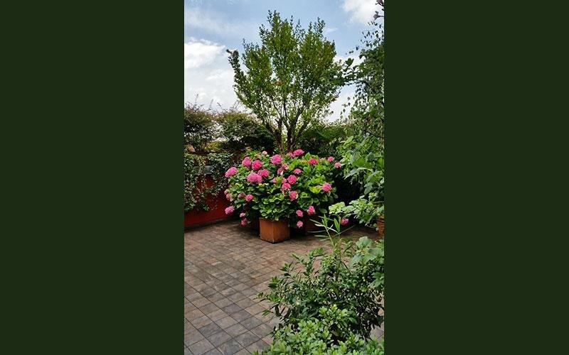rifacimento area verde giardino