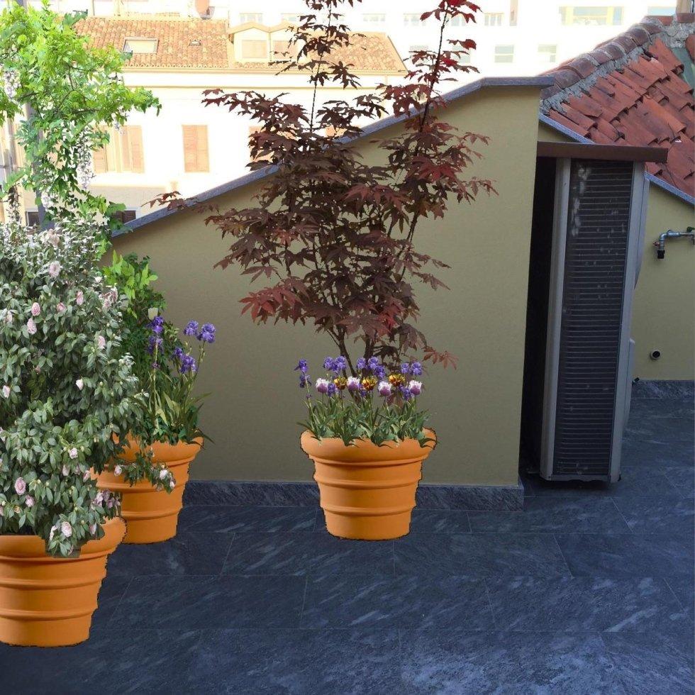 Progettazione e render giardino