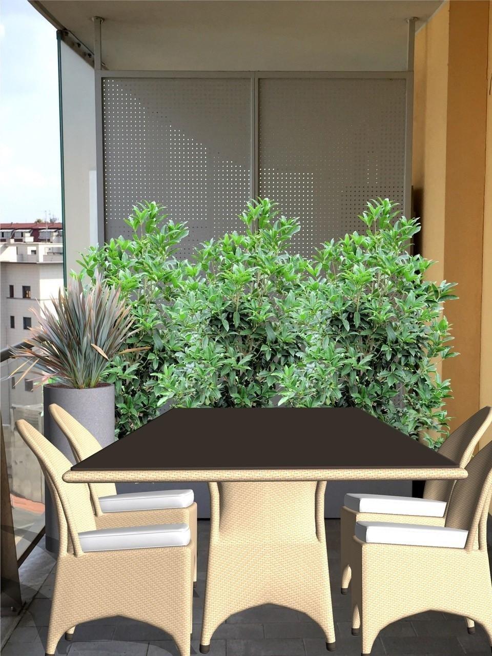 Progettazione aree verdi villa