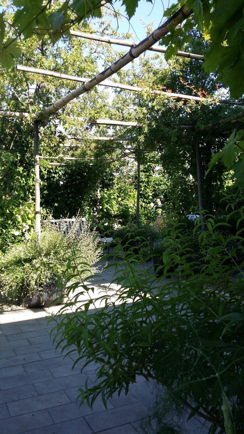 Realizzazione verde su progetto