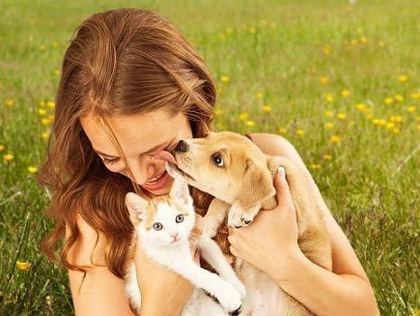 una ragazza tiene in braccio un cucciolo di cane e uno di gatto