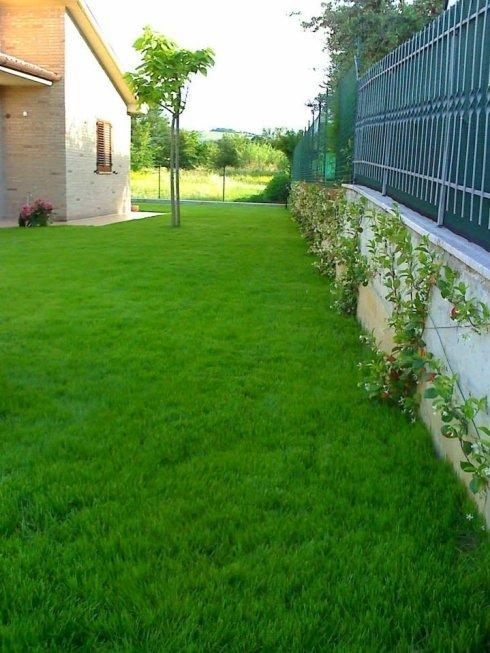 Falciatura erba