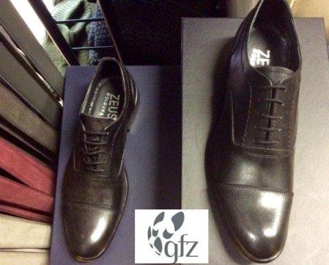 GFZ - Zeus Bologna