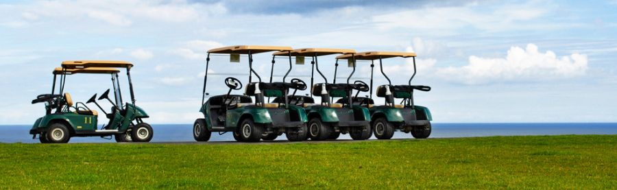 golf carts in La Grange, GA