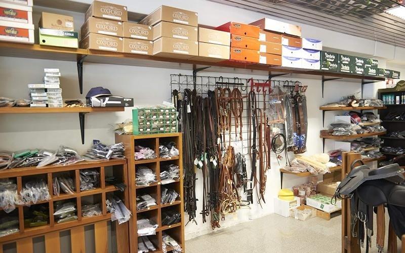 fornitura accessori per cavalli