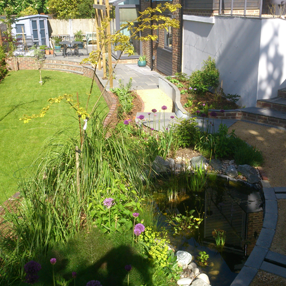 Landscaping features