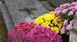 Pratiche cimiteriali, pratiche comunali