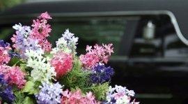 avvisi, affissioni lutto, necrologi, organizzazione funerale