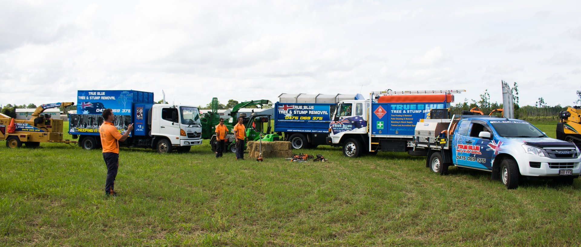 True Blue Tree and Stump Removal Tree removal Sunshine Coast and North Brisbane