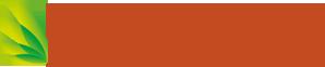 Global Web Solutions Ltd logo