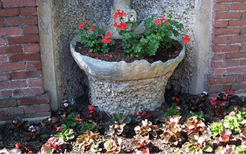 Il Lauro giardinaggio