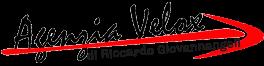 Agenzia Velox