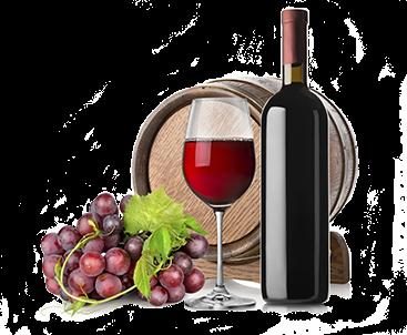 vivaio viticolo