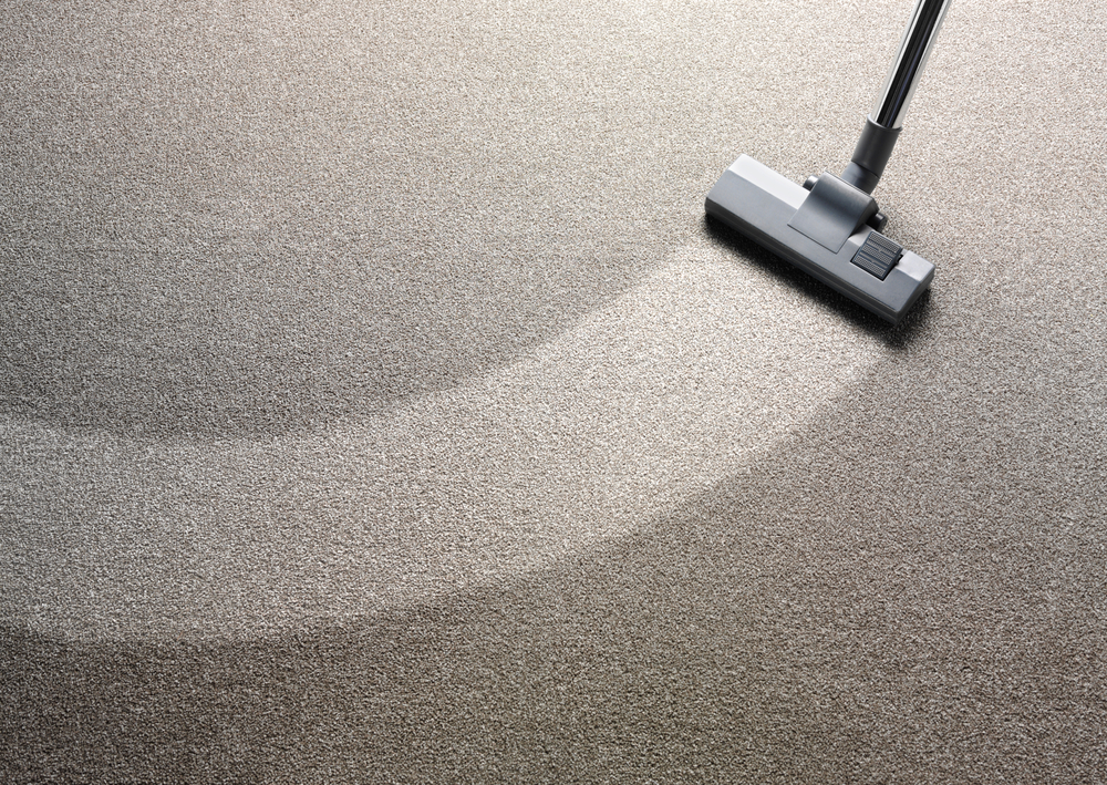 Expert cleaning a carpet in Waterbury, CT