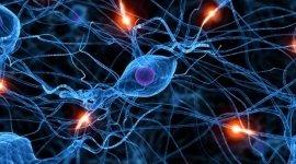 medici specialisti, neurologia, psichiatria