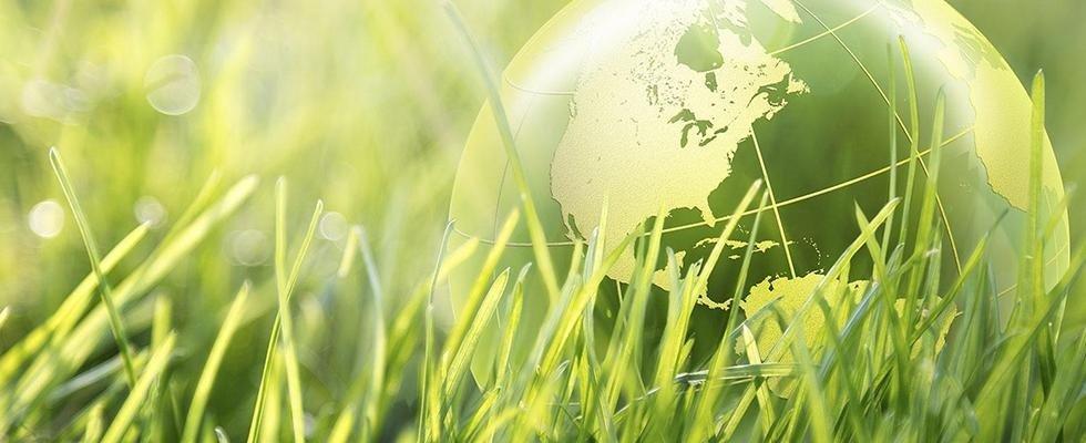 consulenza ambientale roma