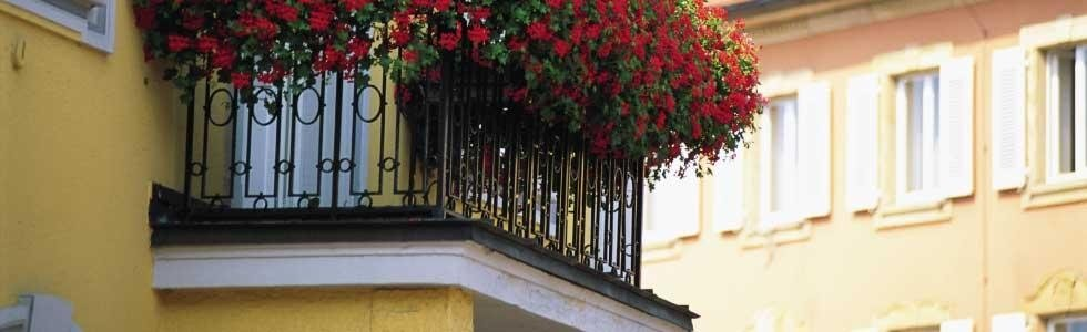Creazione recinsioni Torino