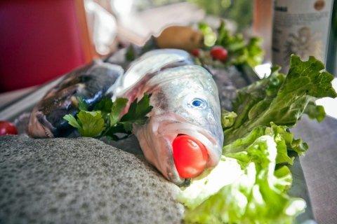 specialità pesce fresco