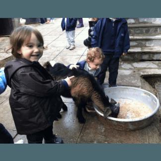 asilo nido fattoria didattica