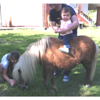 asilo nido cavalli
