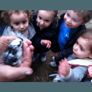 coniglietti asilo nido