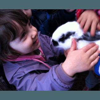 bambini asilo nido e animali