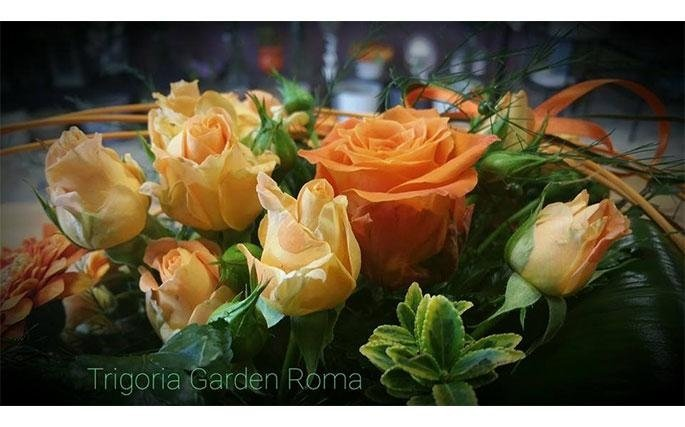 Trigoria Garden Roma