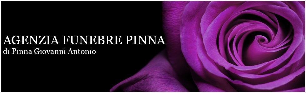 rosa viola su sfondo nero
