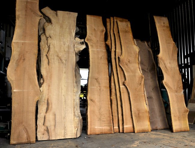 Live edge slabs for sale, Guelph.