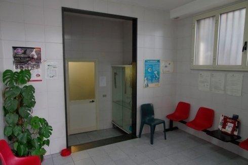 centro ospedaliero veterinario