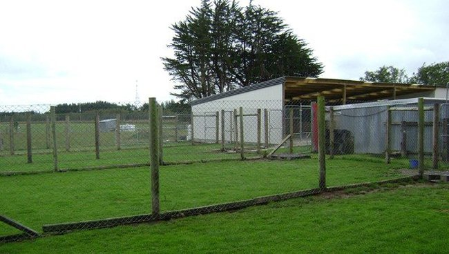 Invercargrill of Kennington Park Boarding Kennels & Cattery  for pets