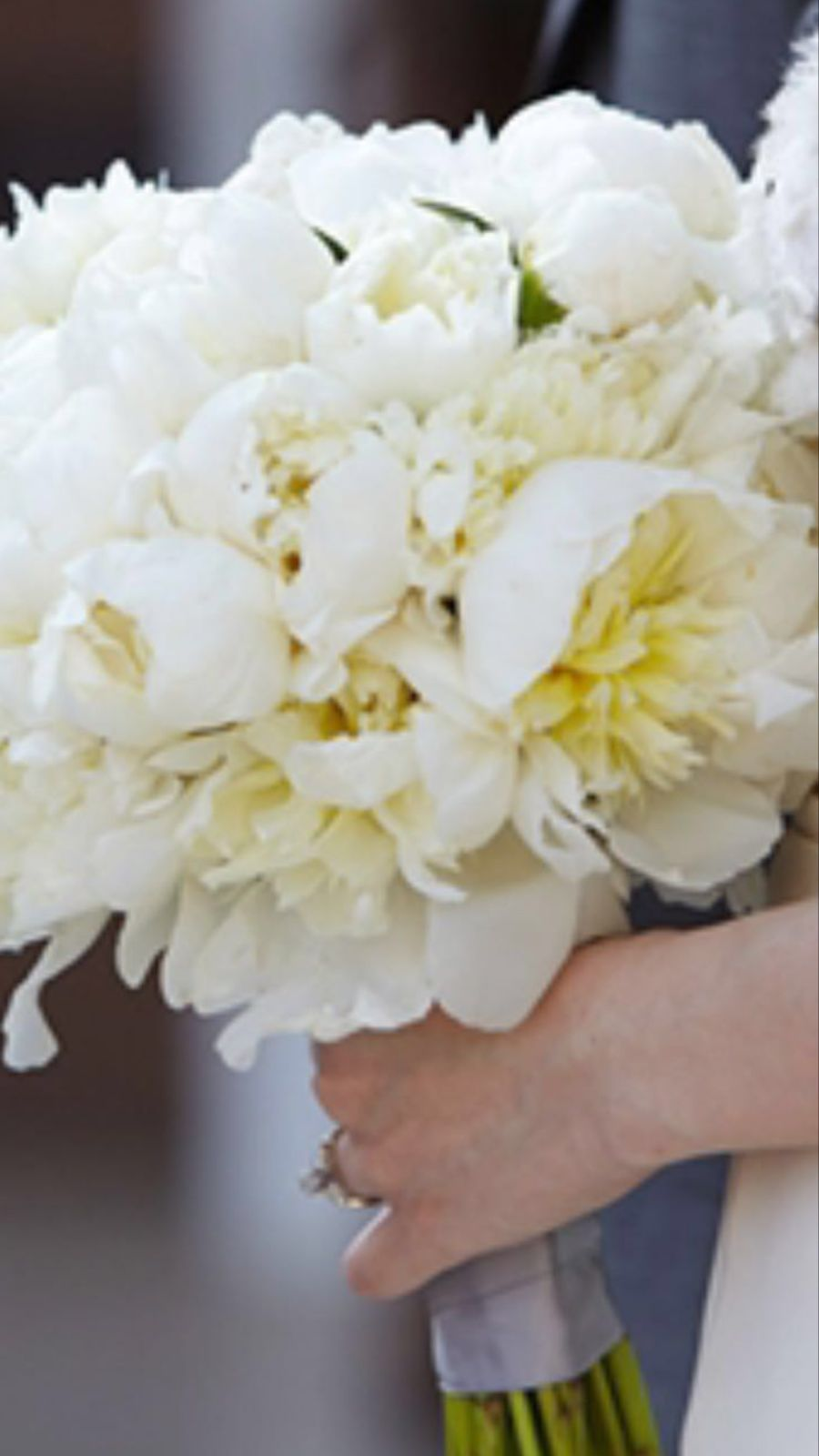fiori bianchi per bouquet sposa