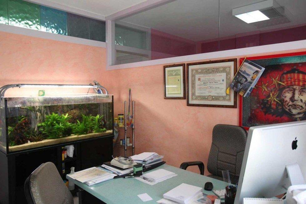 Studio dott. pellegrino
