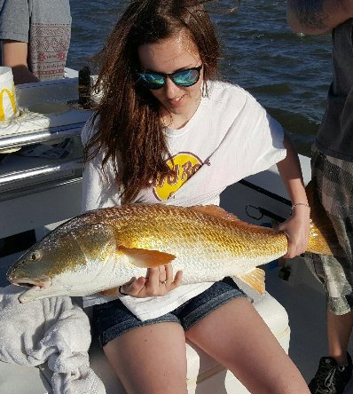 Huge bull red drum