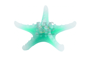 green large starfish candle